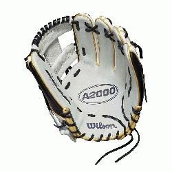 /Pitcher model; H-Web; fast pitch-specific WTA20RF1